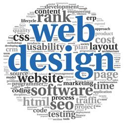 Best Web Designing/Development